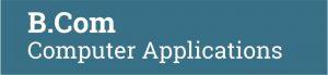 b.com computer application